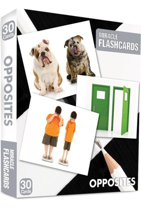 Miracle Flashcards: Oppposites Box 30 Cards