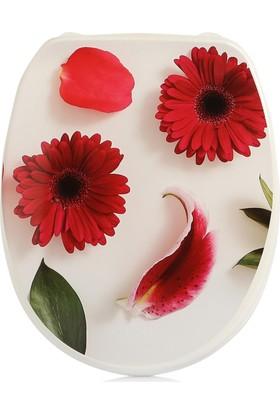 Alper Kırılmaz Çiçek Desenli Klozet Kapağı
