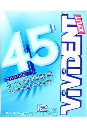 Vivident Cüzdan 45 Dakika Nane Aromalı Sakız 33 Gr
