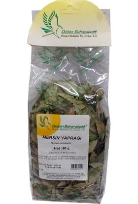 Doğan Baharat Mersin Yaprağı 50 gr Paket