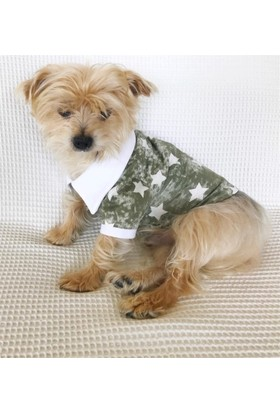 Kemique Green Star - Polo Yaka Tişört - Summer Köpek Elbisesi