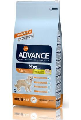Advance Maxi Adult Yetişkin Tavuklu Köpek Maması 14 Kg