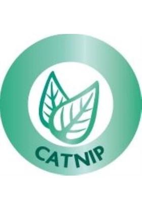 Catnipli Sesli Peluş Fare Kedi Oyuncağı 5cm gri