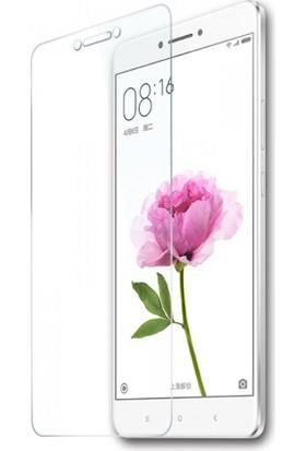 Case 4U Xiaomi Mi Max 2 Cam Ekran Koruyucu
