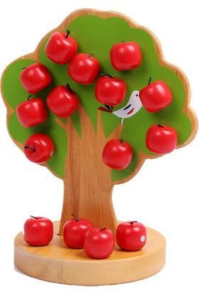 Manyetik Elma Ağacı