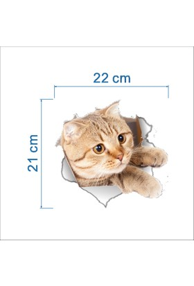 BigWall Sevimli Kedi Sticker Banyo Ve Duvar Stickerı Model 1
