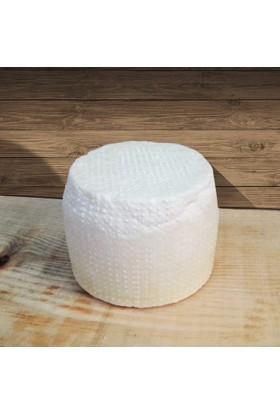 Kesebir Mandırası Sade Saganaki Peyniri 1 Kg