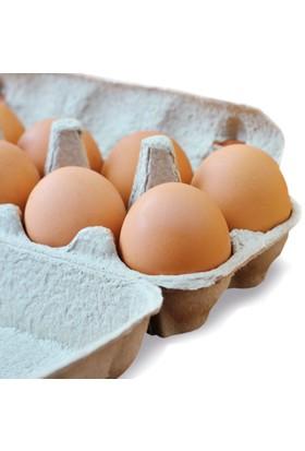 Raya Organik Yumurta 8'Li