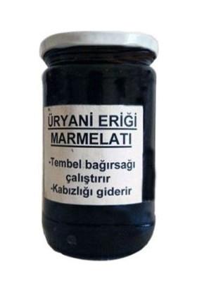 Tosyalı Pirinçci Hacı Üryani Eriği Marmelatı 850 Gr