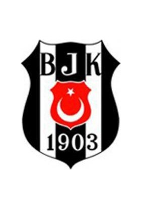 Rubenis Beşiktaş Hazır Defter Kabı Pp Metalize A-4