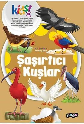 Şaşırtıcı Kuşlar İlk Kütüphanem Serisi