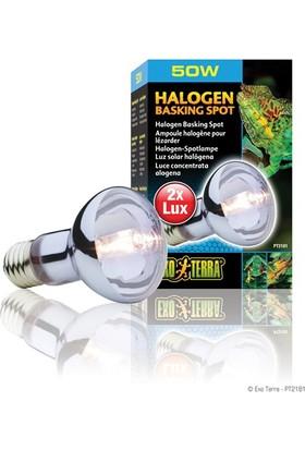 Exo Terra Sunglo Daylıte Halogen Lp. 50W-V