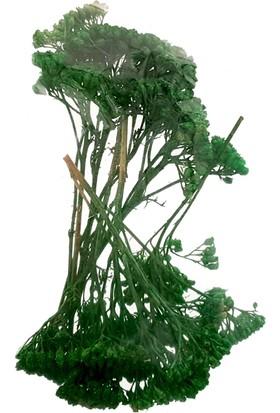 Mk Model Poşet Ağaç Yeşil 50-1/500