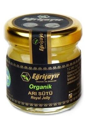 Eğriçayır Eğriçayır Organik Arı Sütü 40gr