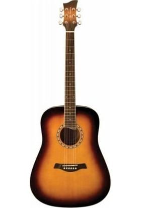 Jay Turser JTA 450S ACS Akustik Gitar