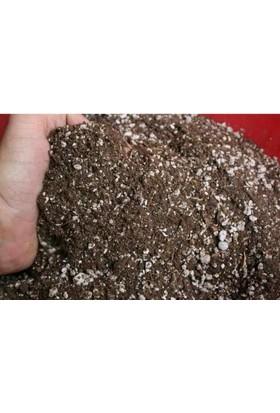 Agro Tohum Bonsai Toprağı 3 Kg + Saksı