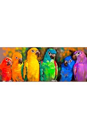 Yorkadesign Plaj Havlusu Papağan Desenli