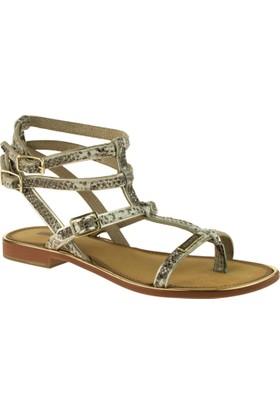 Greyder 51304 Zn Chic Casual Bej Kadın Sandalet