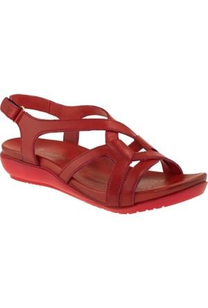 Venüs Sandalet 123_206Z-3680-1