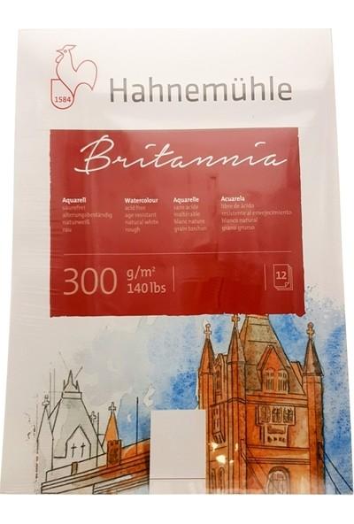 Hahnemühle Britannia Sulu Boya Blok 300Gr. - 24X32Cm