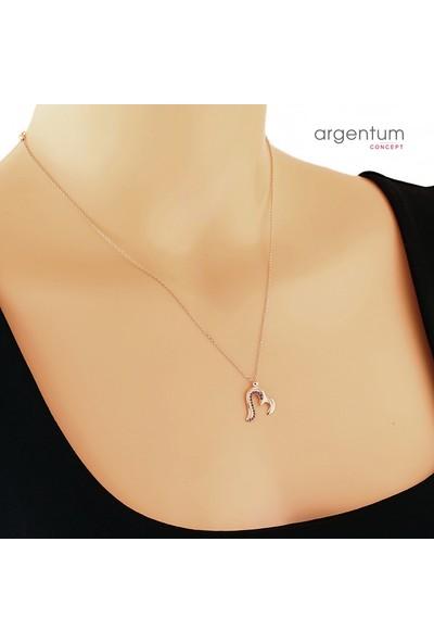 Argentum Concept Zirkon Taşlı Gümüş Rose Kalp Kolye
