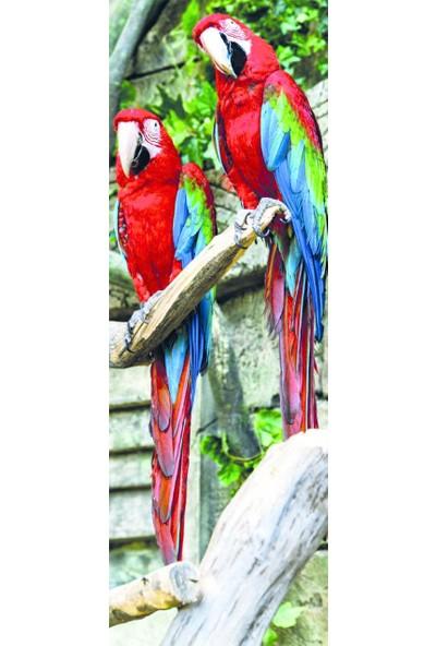 Dino Puzzle 1000 Parça Papağan (Panorama Puzzle)