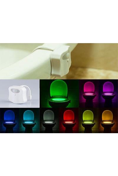 Wildlebend Sensörlü 8 Renk Klozet Işığı