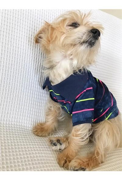 Kemique Party Tıme - Polo Yaka Tişört - Summer Köpek Elbisesi