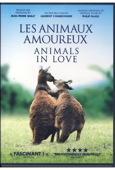Animals In Love - Aşıklar - Belgesel Dvd
