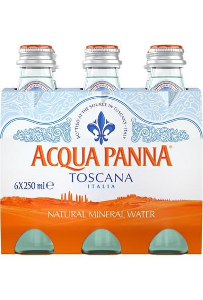 Acqua Panna Doğal Kaynak Suyu 6 Adet x 250 ml