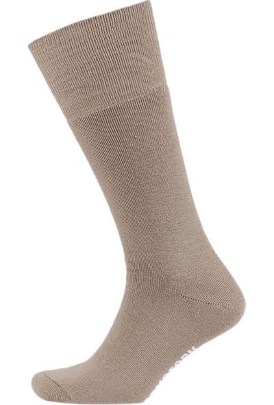 Thermoform Bambu Asker Çorap