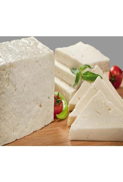 Ege Bahçesi Ezine Peyniri