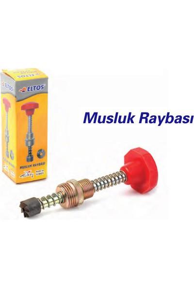 Eltos Musluk Raybası 090909