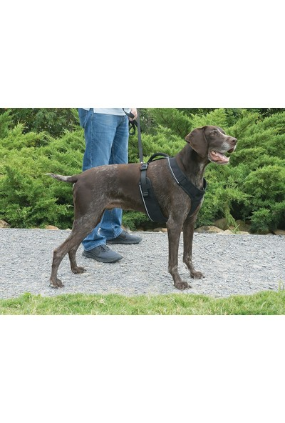 Easy Sport™ Harness - Large Siyah Köpek Tasması