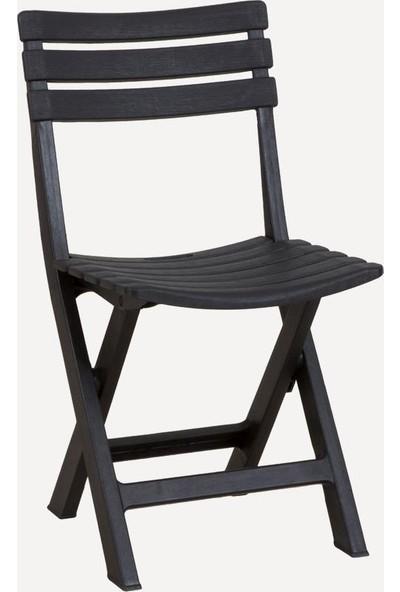 Decotex Plastik Katlanan Sandalye Bahçe Balkon Dış Mekan Katlanır Sandalye Kahve