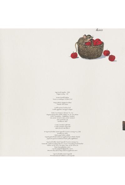 Kırmızı Kanatlı Baykuş - Feridun Oral