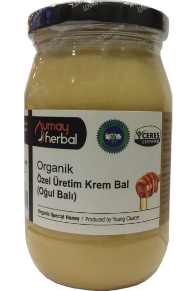 Umay Herbal Organik Oğul Balı (Özel Üretim Krem Bal)