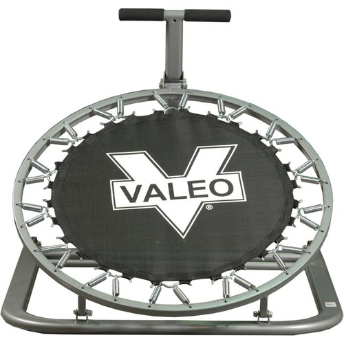 Valeo Sağlık Topu Çalışma Aleti Tr6136