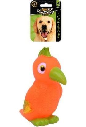 Doglife Plastik Papağan Köpek Oyuncak