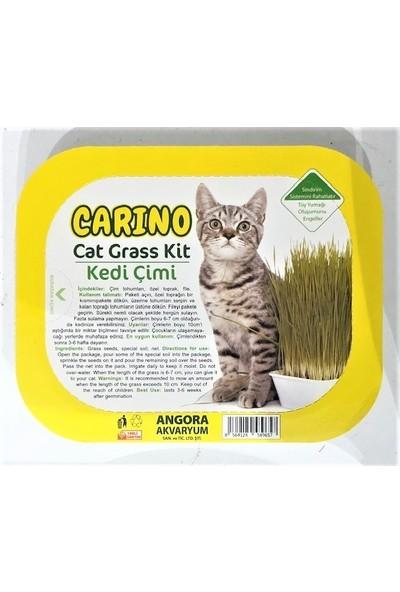 Carino Doğal Kedi Çimi Fileli