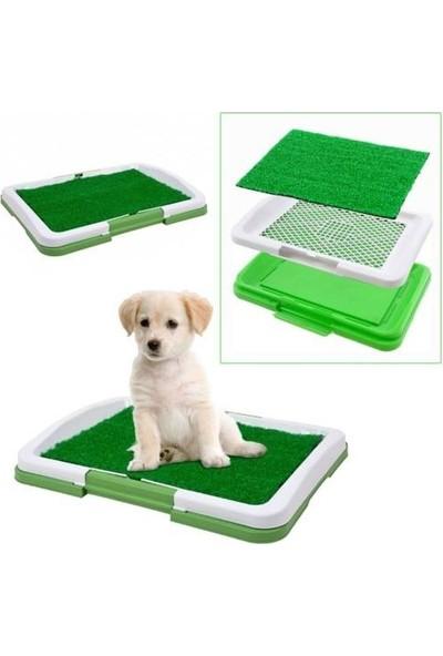 3 Katmanlı Yapay Çimli Yavru Köpek Tuvalet Eğitim Seti 46X32X5 cm