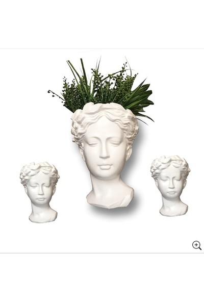 Milenyum 3'lü Beyaz Antik Helen Kafası Taş Büst Saksı Seti