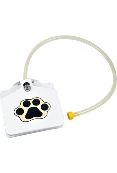 Buyfun Yüksek Paslanmaz Çelik Pet Köpek Kedi Su Çeşmesi