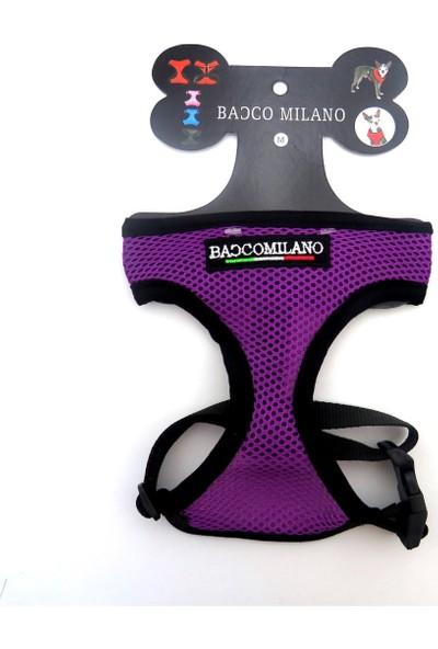 Bacco Milano Göğüs Tasma Small Mor