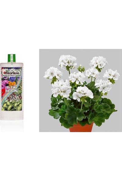Tunç Botanik Tropikal Bitki Besini - Genel Kullanım 500 ml