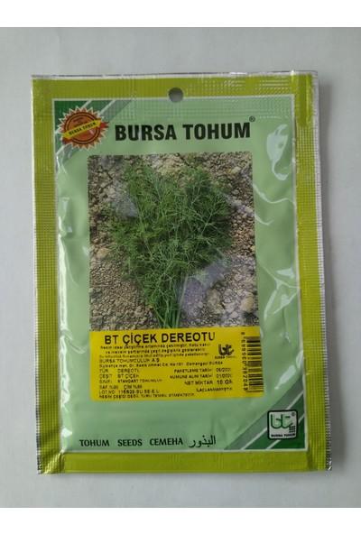 DÖRTBUDAK Bt Dereotu Tohumu 10 gr