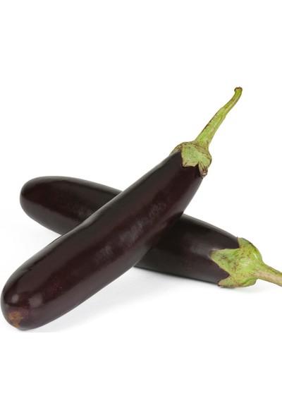 Murat Tohumculuk Kemer Patlıcan Tohumu 25'li