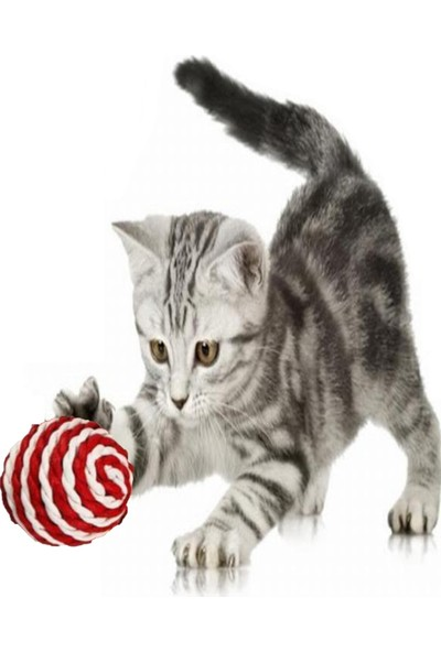 Tineke Ip Sarma Renkli Kedi Oyun Topu 5 cm ( 1 Adet ) Kedi Oyuncağı