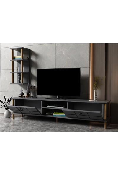 Ayaz Home Lotus Tv Ünitesi Antresit