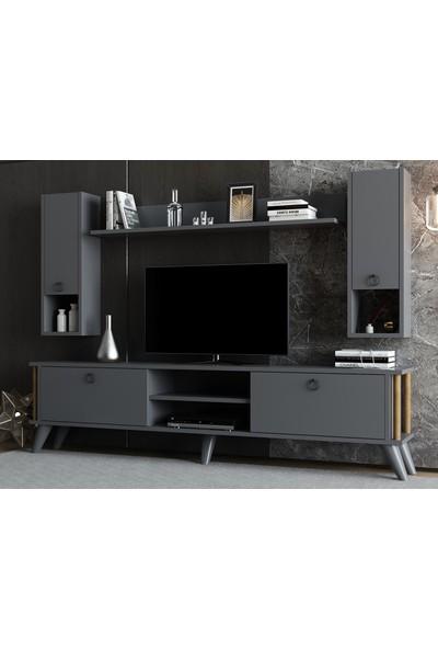 Ayaz Home Siena Tv Ünitesi